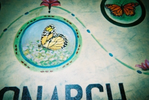 Detail, Center Monarch Butterfly